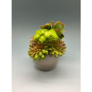 Home Decor, Decoration, Housewarming, Gift, Faux Succulent Small Arrangement in a Tan Wheel Thrown Cup