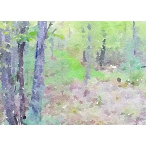 Woodsy Abstract Watercolor 14x11 Print