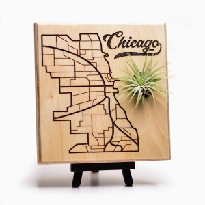 Urban Map Garden - Chicago - Maple Ply