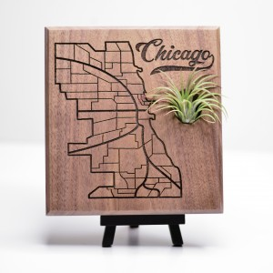 Urban Map Garden - Chicago - Walnut